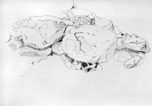 Sketches #1 Künstlerin Anna Knodt